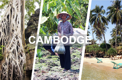 Cambodge en photos