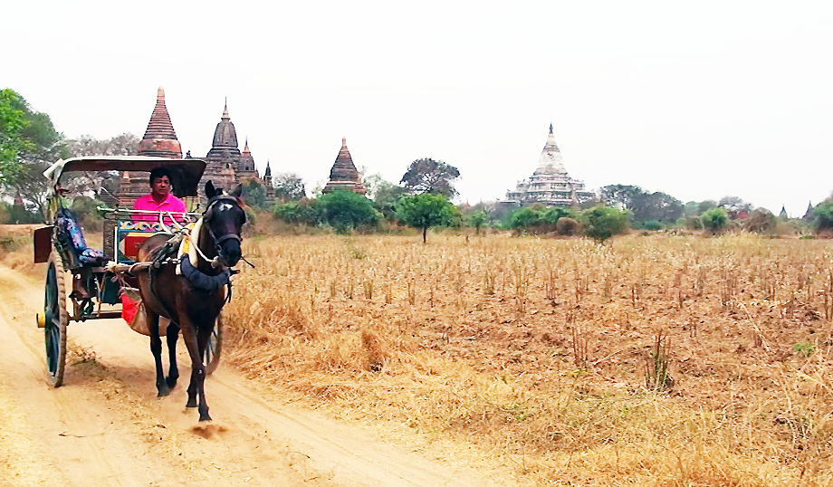 Calèche Bagan