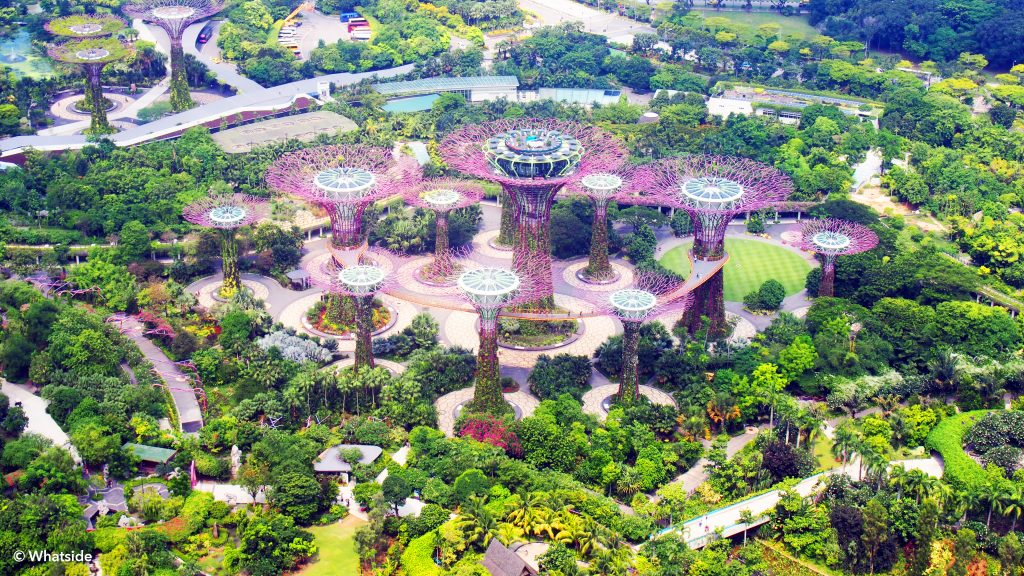 Vue sur Gardens by the bay - Singapour