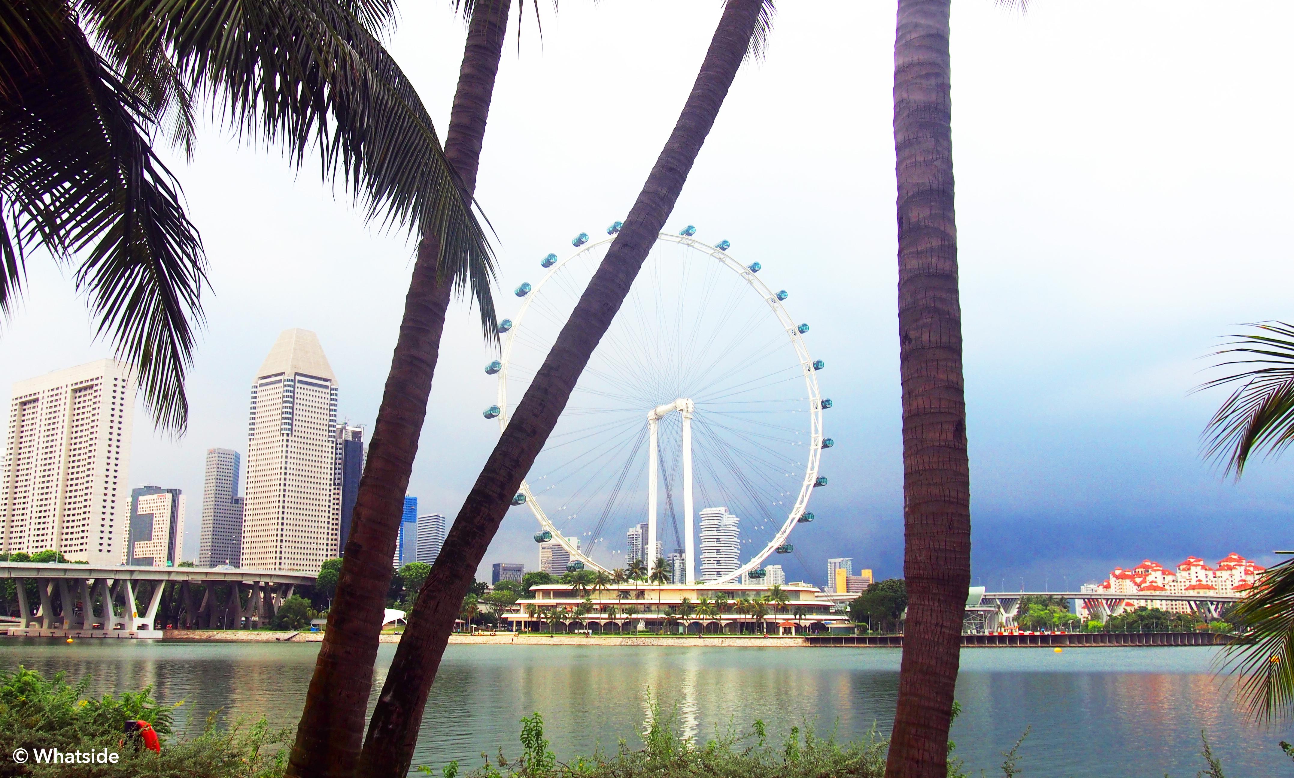 Singapour flyer - Singapour