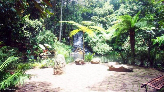 Jardin botanique de Bogota