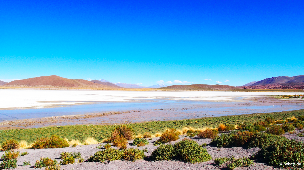 La Laguna Colorado du Sud Lipez