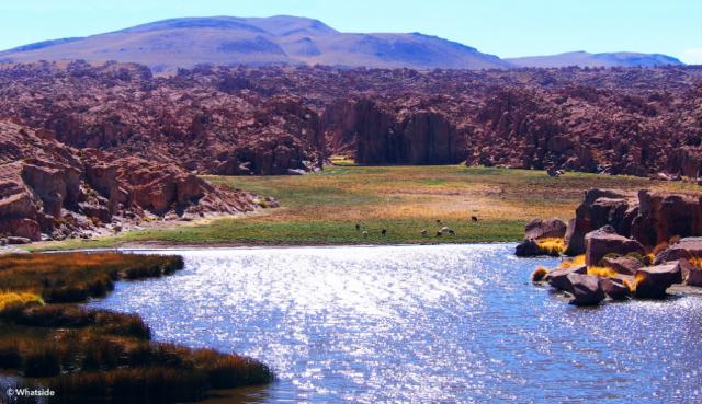 La Laguna Negra du Sud Lipez