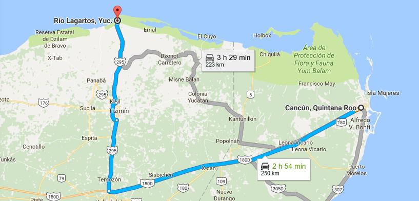 Comment aller à rio lagartos depuis Cancun