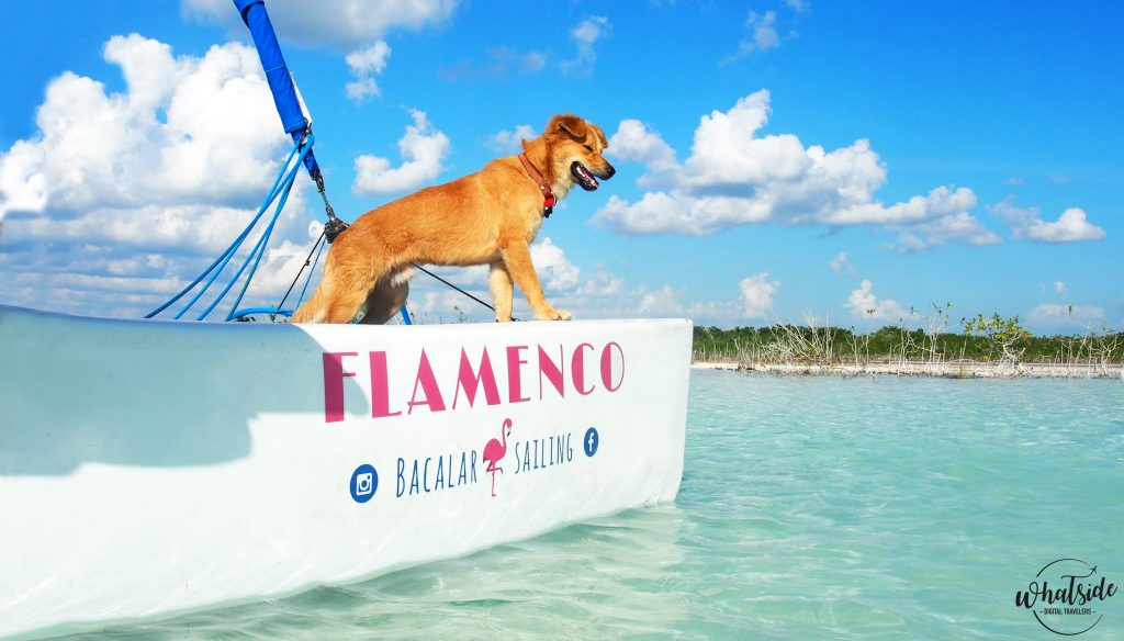 bacalar sailing lagune catamaran